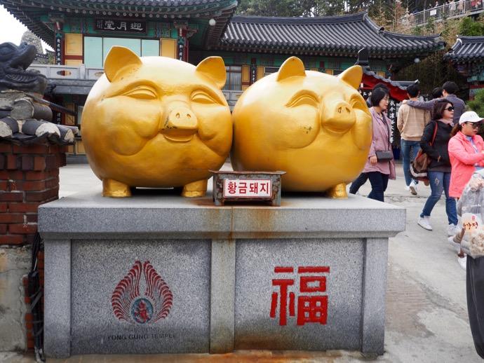 海東竜宮寺の黄金の豚