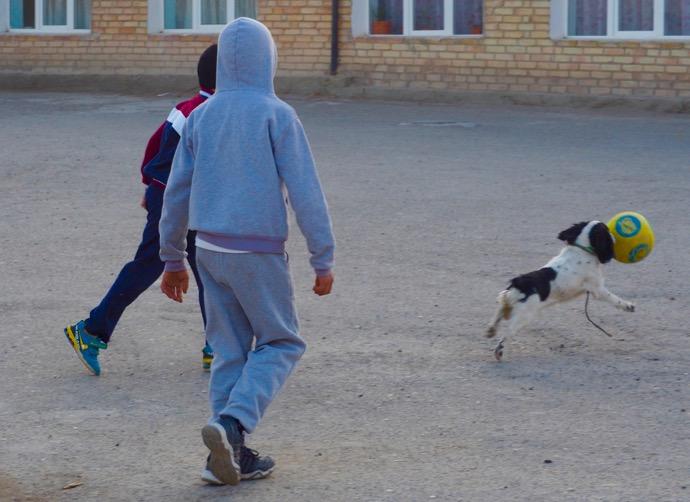 世界遺産チョル・ミナルの前でサッカーを楽しむ少年たちと犬