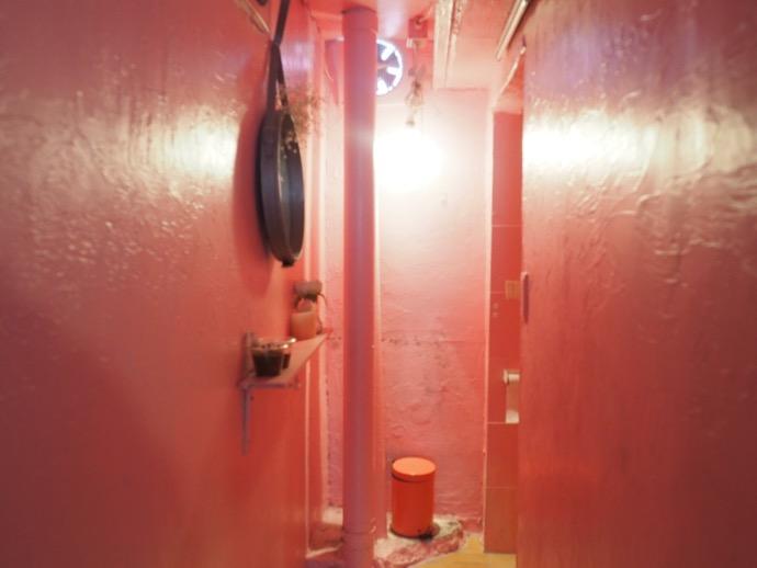 ピンクの壁の女性用トイレ