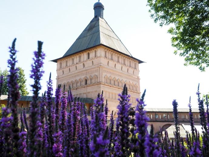 スパソ・エフフィミエフ修道院の紫の花