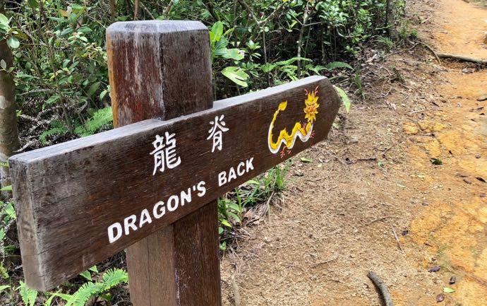 ドラゴンズバックの看板