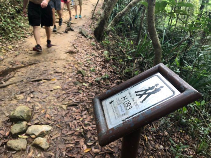 ドラゴンズバックの標識93