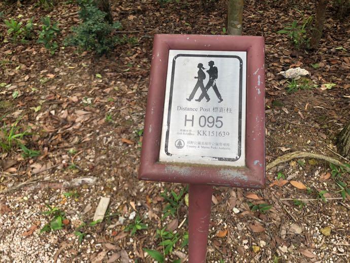 ドラゴンズバックの標識95
