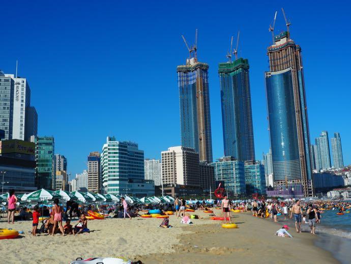 海岸沿いの工事中の高層ビル