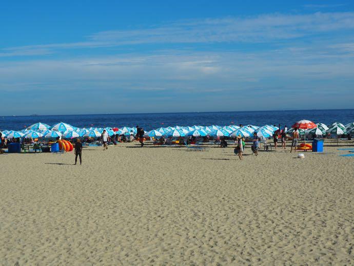パラソルが並ぶ海雲台ビーチ