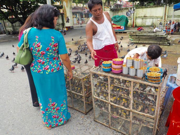 参拝用に小鳥を買う人々