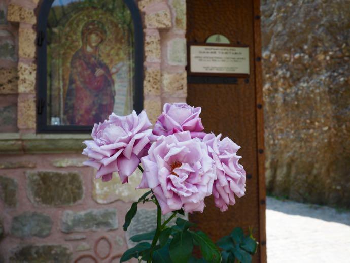 フラスコ画とピンクのバラ