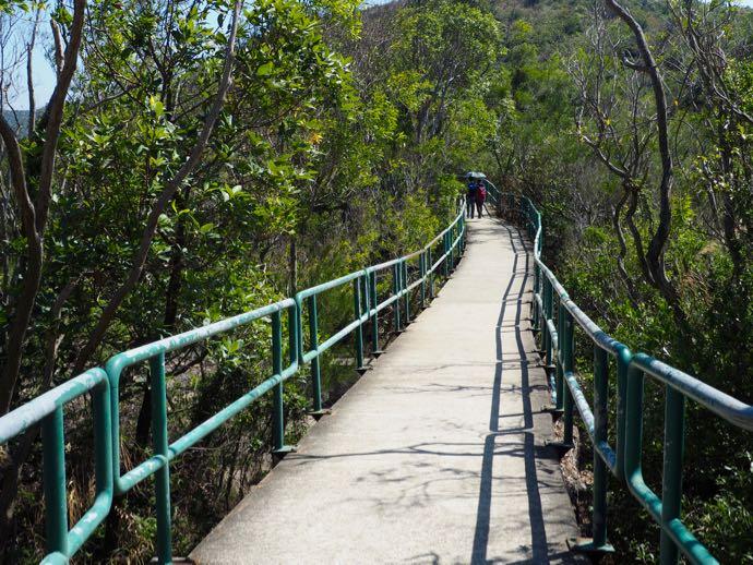 ラマ島の木々の中を歩く