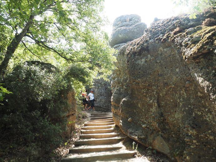 トレッキングルートの階段