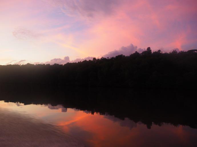 ピンクに染まるブルネイ川