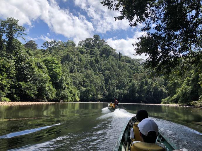 大自然をボートで進む
