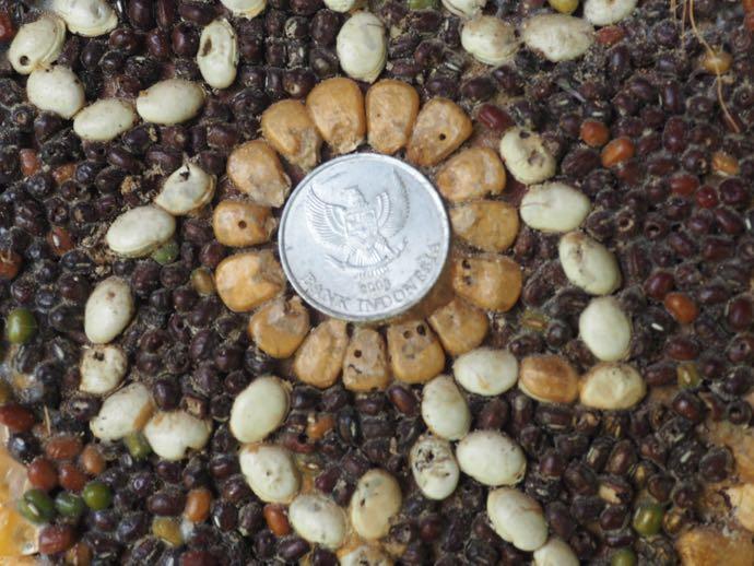 コインやナッツで装飾されたバロン