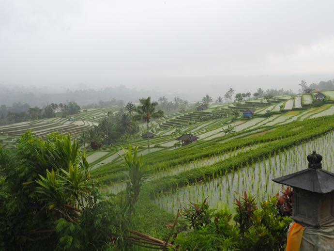 小雨が降るジャティルウィのライステラス