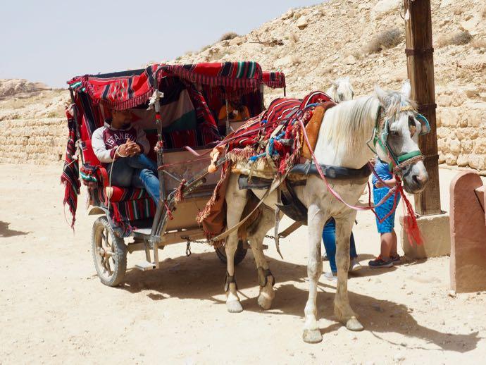 ペトラ遺跡の馬車