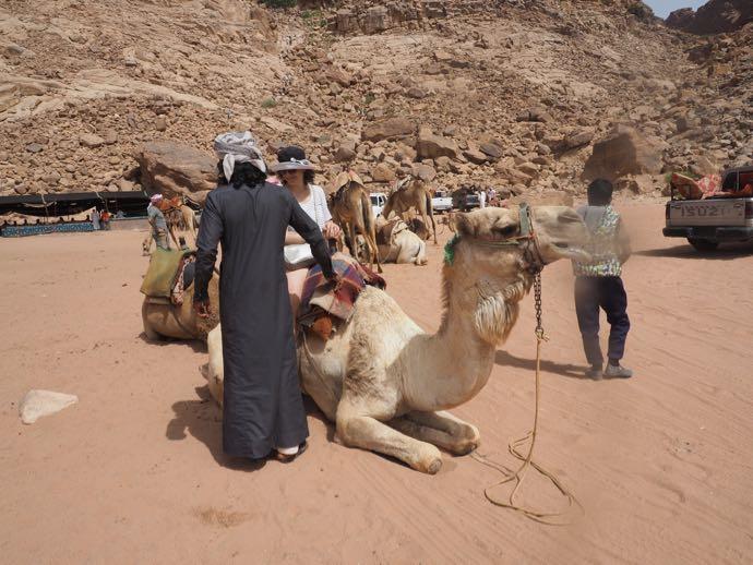 ラクダに乗るか悩む女性