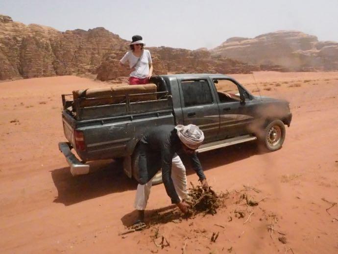 薪用の植物を拾うユーファス