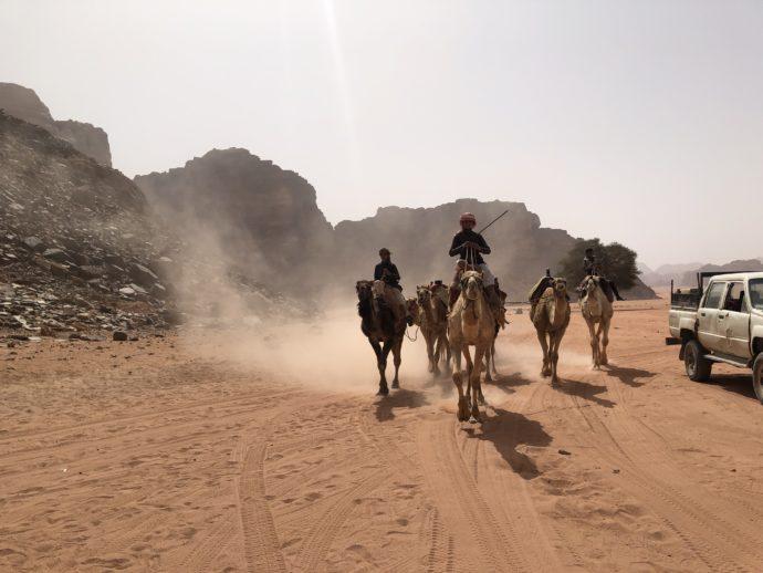 ラクダで駆ける男性