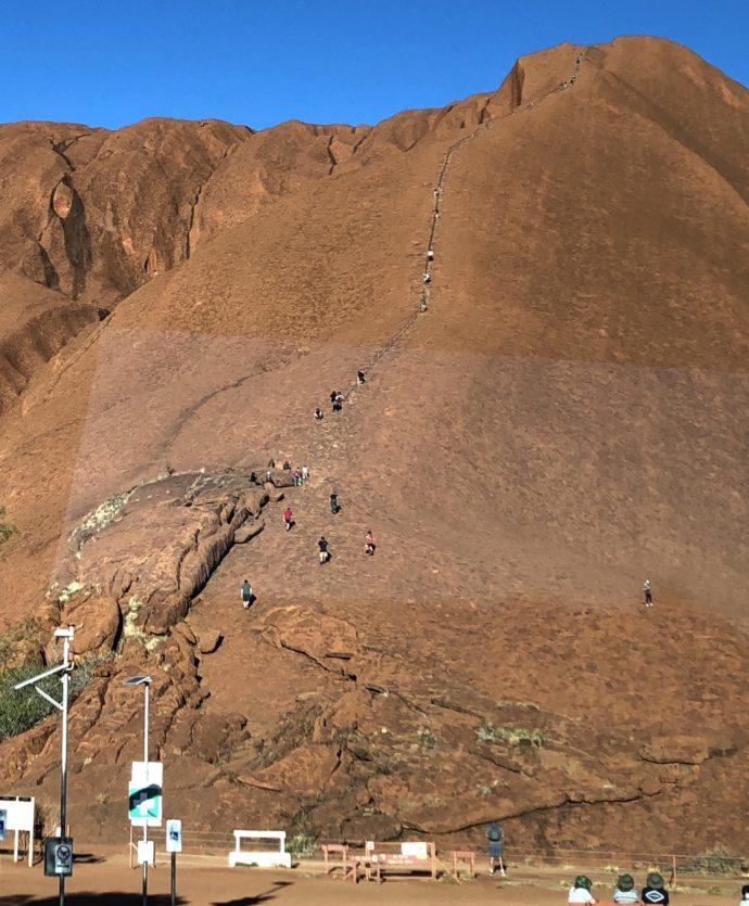 ウルル登頂するあり行列