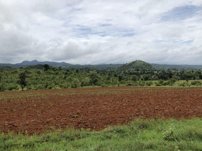 ミャンマーの片田舎