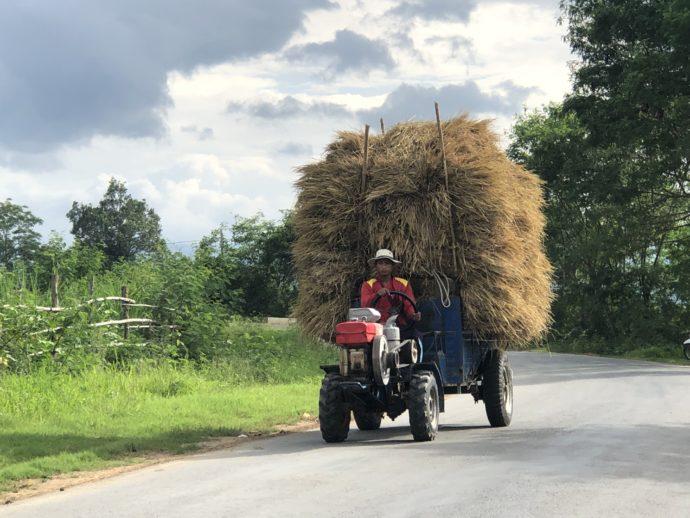 巨大な藁を運ぶ車