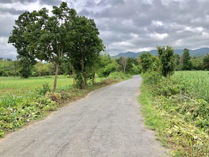 ワイナリーへの田舎道