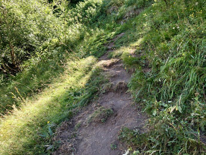 トレッキングルートの山道