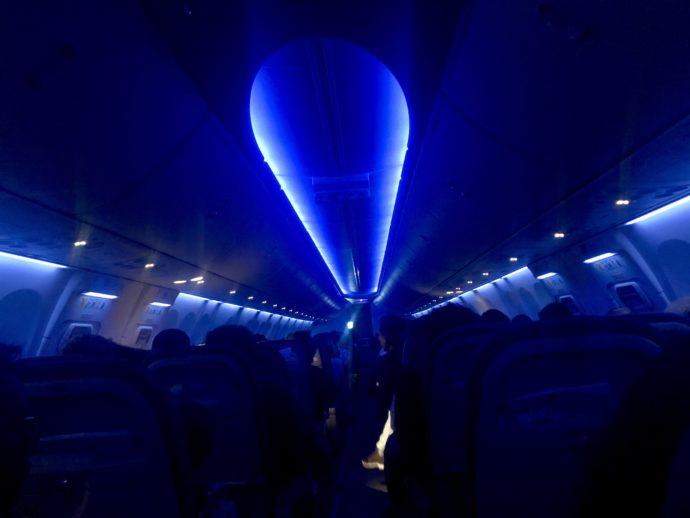 フライドバイのブルーライトの機内