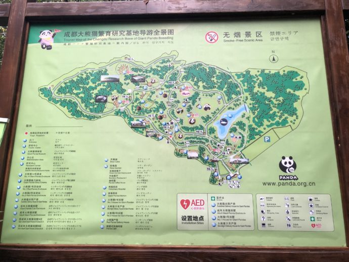 パンダ基地のマップ