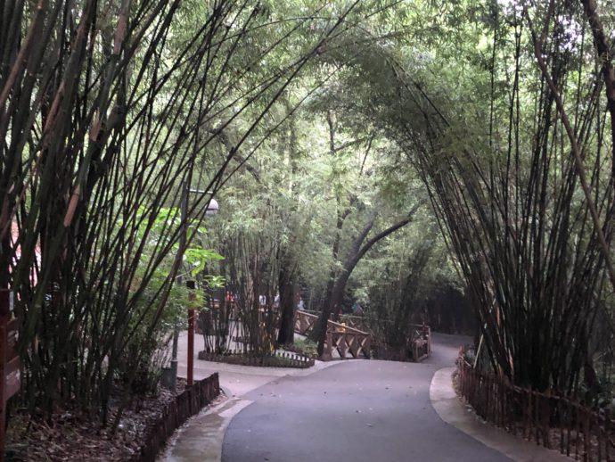 パンダ基地内の移動通路