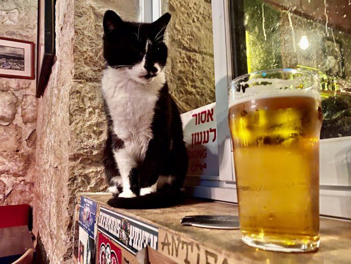 イスラエルのビールと看板猫