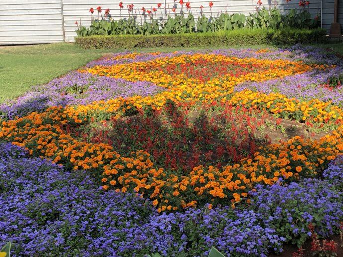 エチミアジン修道院の綺麗な花壇
