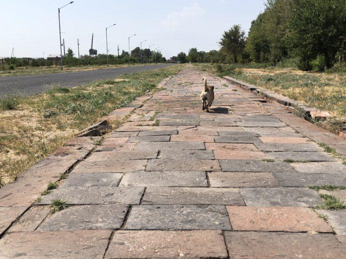 ズヴァルトノツ古代遺跡