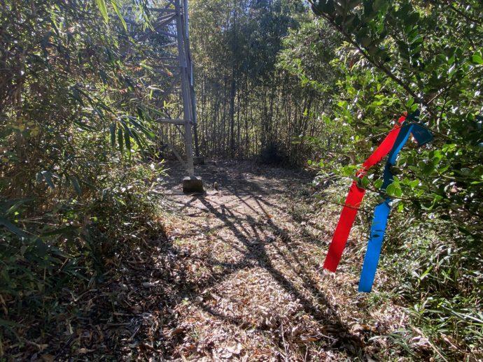 竹林とオルレコース目印
