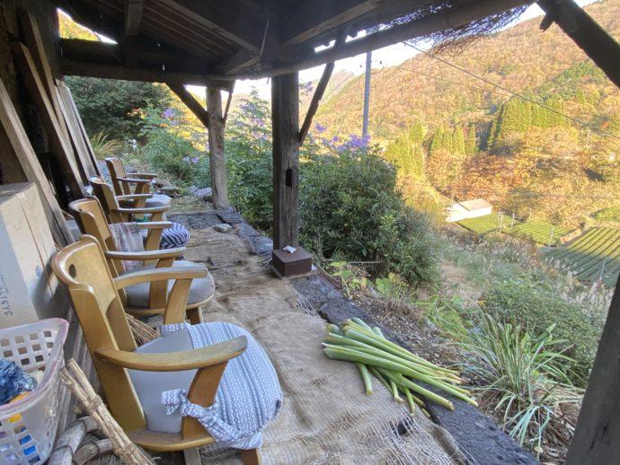 茶園を眺める休憩所