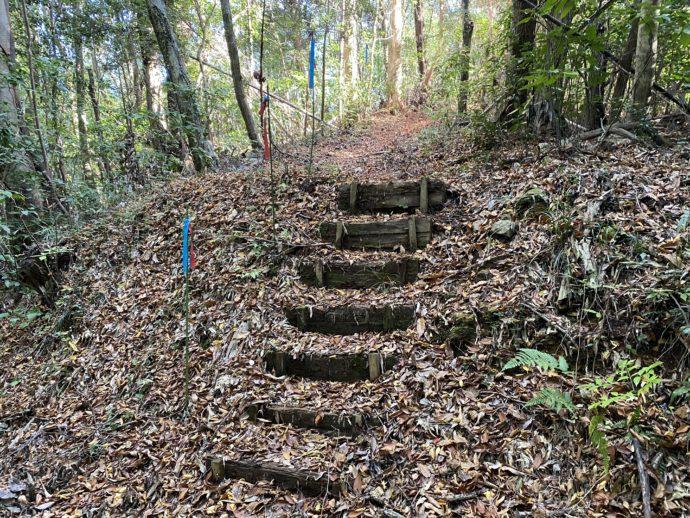 葉っぱに埋もれた階段