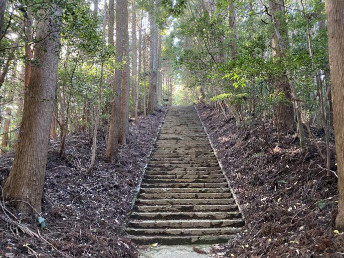 向山神社の参道