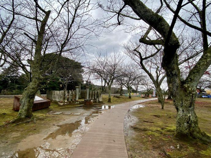 吉崎御坊跡の道