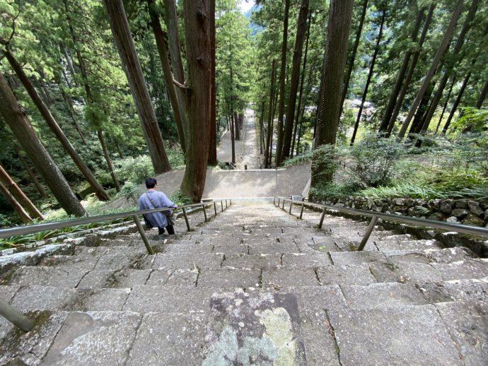 上から見下ろす菩提梯