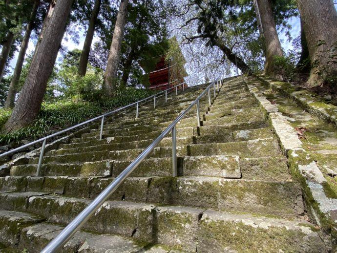 菩提梯と奥に五重塔