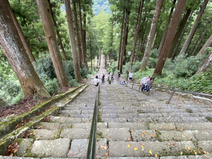 久遠寺の石段「菩提梯」