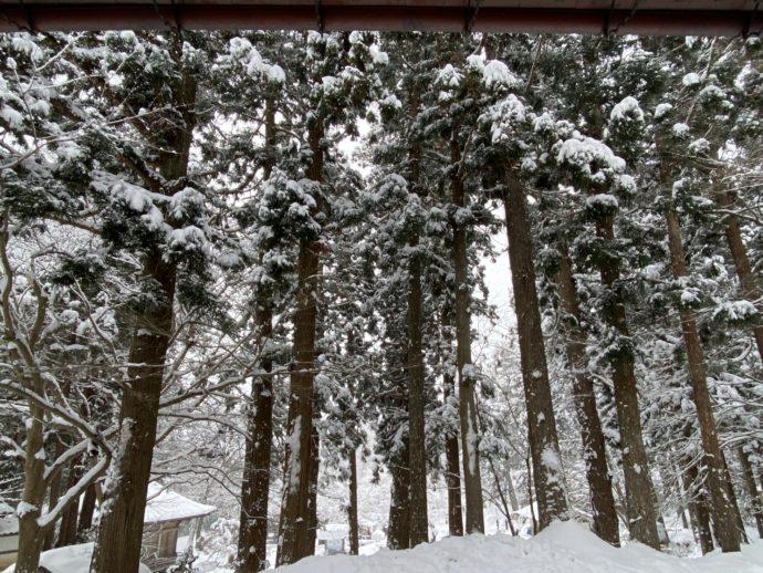 雪の積もる中尊寺