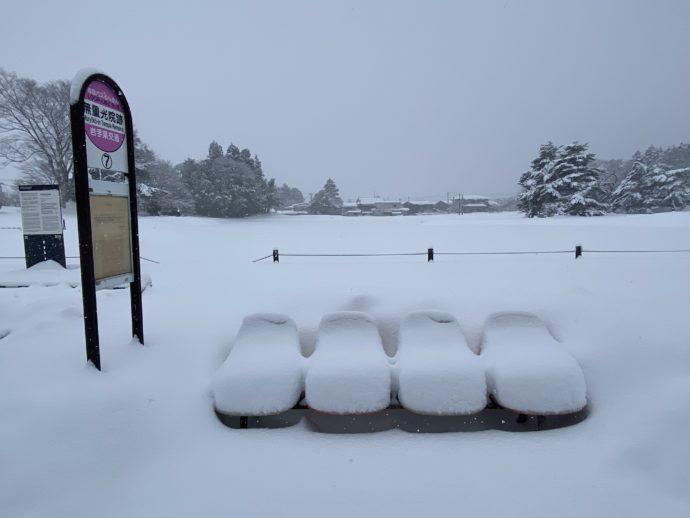 大雪の無量光院跡のベンチ