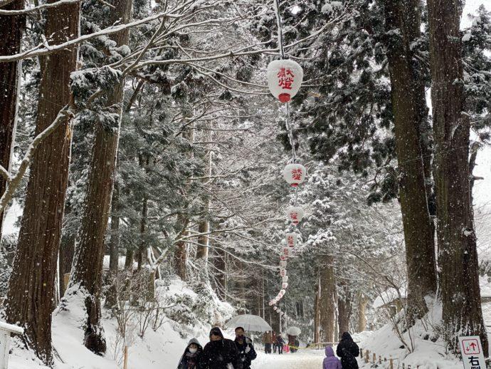 雪の積もる提灯