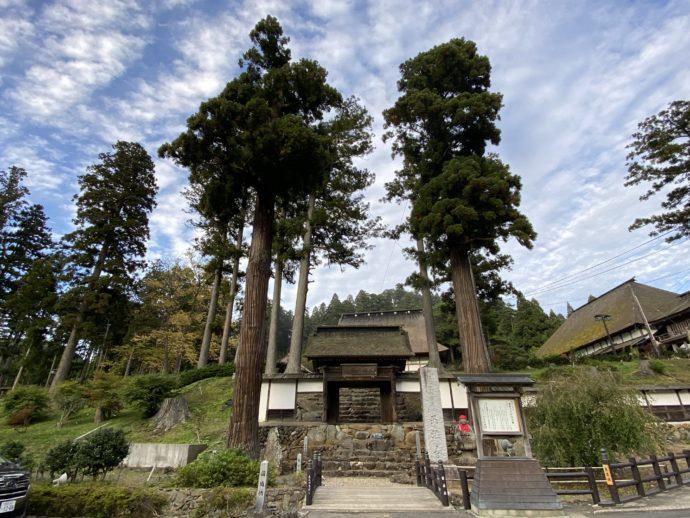 正法寺門と立派な杉の木