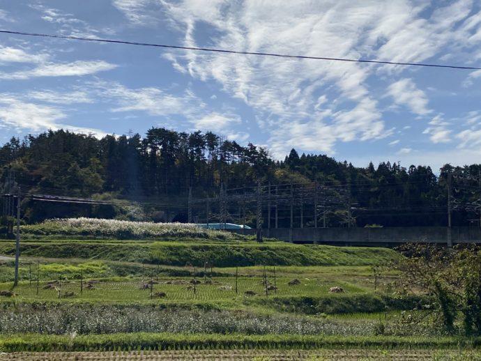 畑の中を新幹線が通過