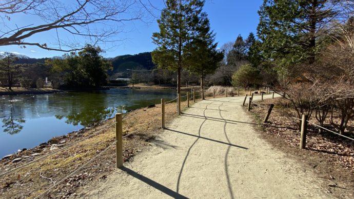 白水阿弥陀堂の池の周りの道