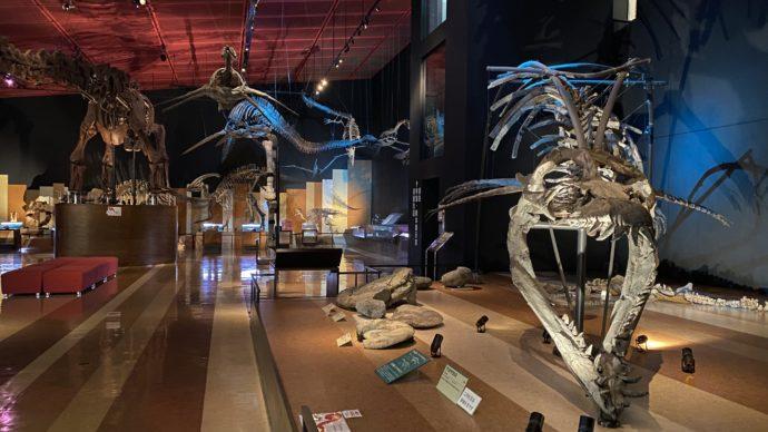 いわき市石炭・化石館 ほるるの恐竜