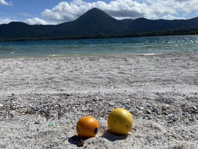 極楽浜とお供えの果物