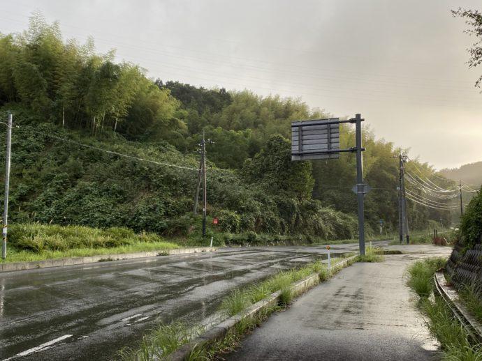 雨上がりの道路