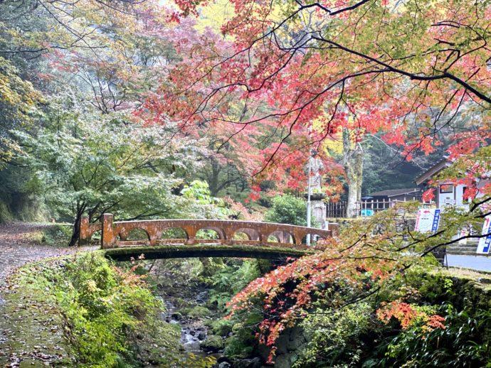 紅葉の鰐淵寺